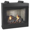 "36"" Breckenridge Deluxe Flush Face Vent Free Firebox, Refractory Liner - Empire Comfort Systems"